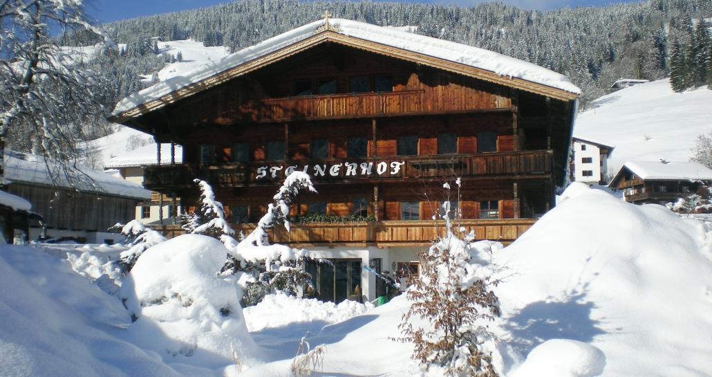 Steinerhof im Winter